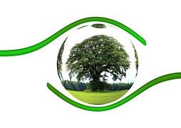 ecology-450590__180