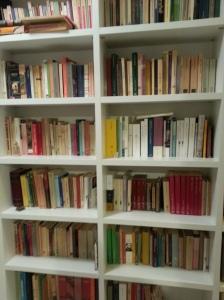 bibliotoca-casa